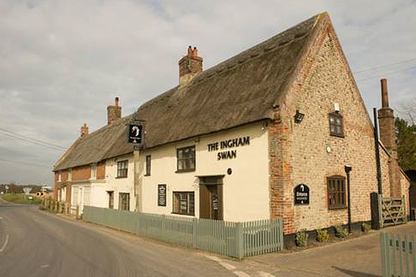 Ingham Swan
