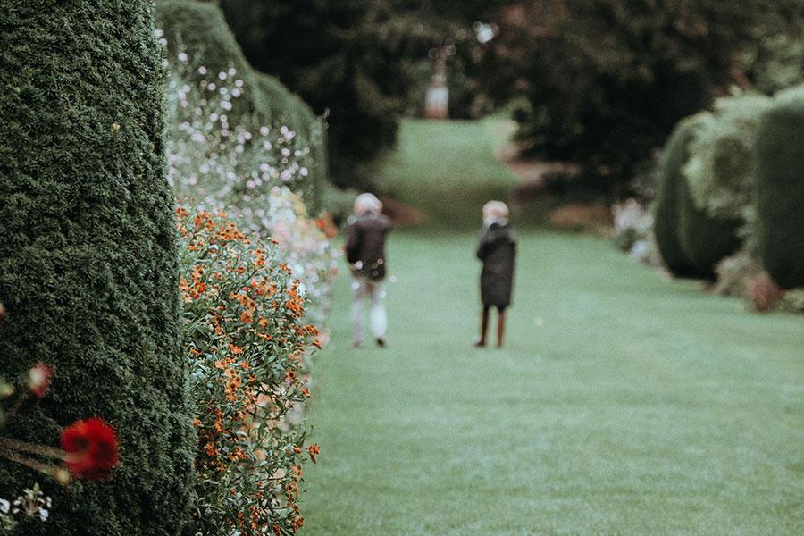 Stately homes garden